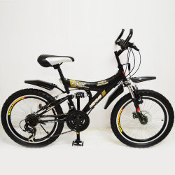 Велосипед T20-7261 DBF